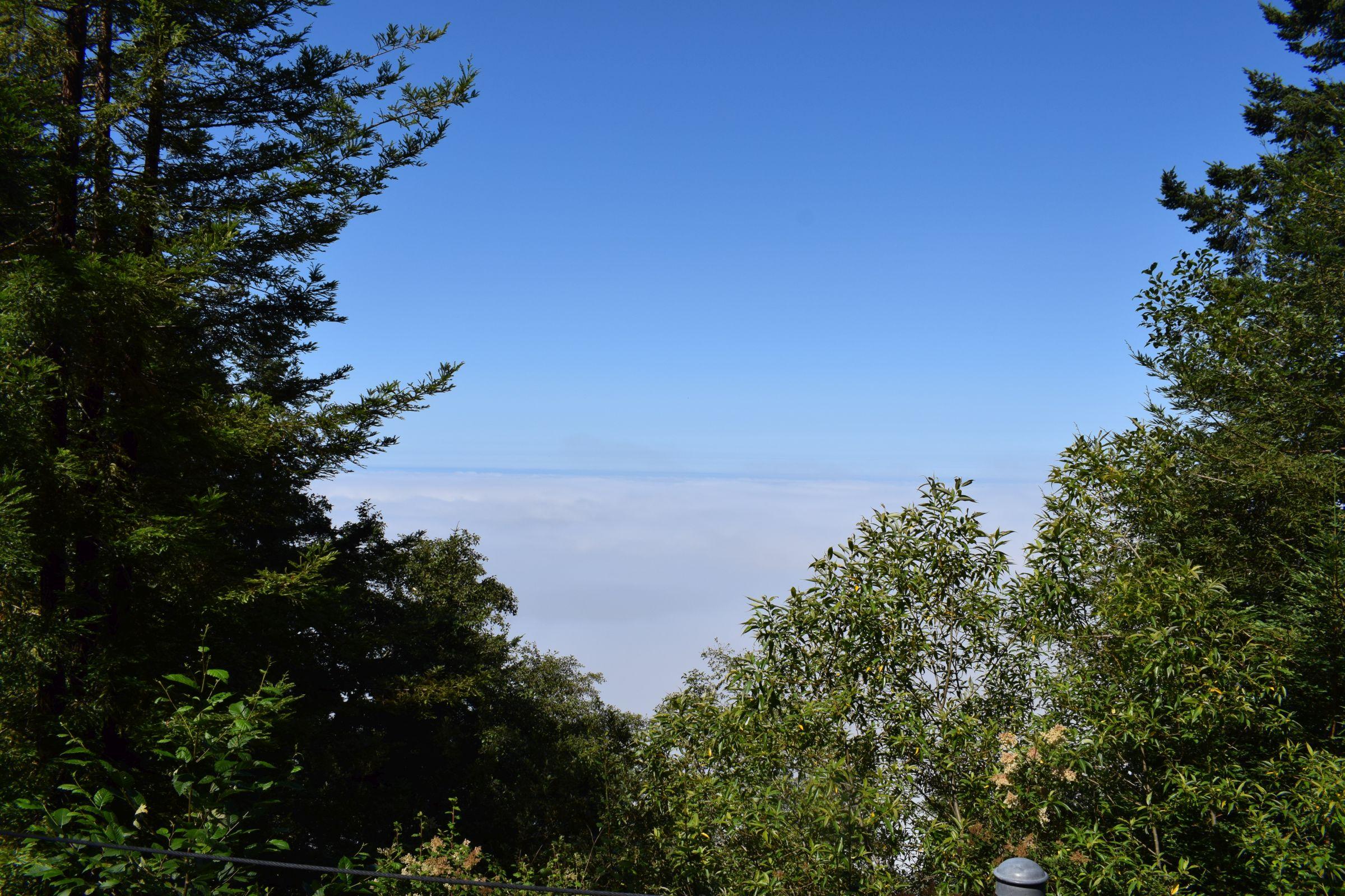 Wolkenbasis